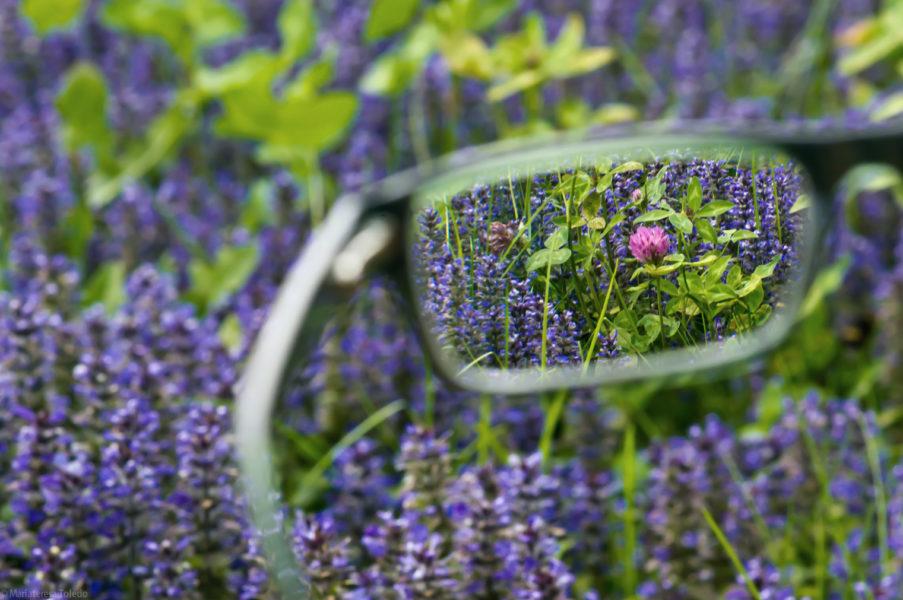 Impression FreeSign 3 - das beste Gleitsichtbrillenglas von Rodenstock