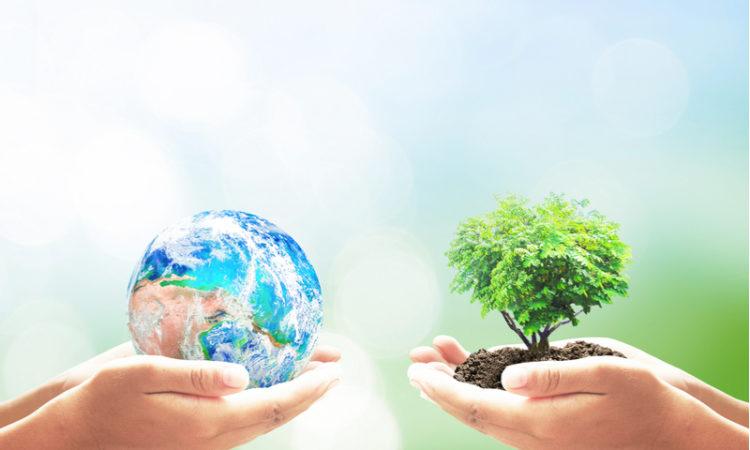 5 einfache Tipps um die Umwelt zu schonen