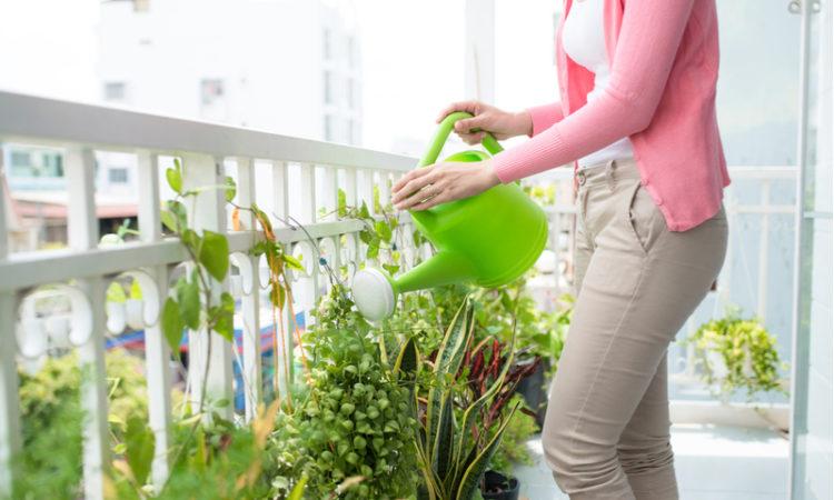 So werden Garten und Balkon fit gemacht für den Sommer