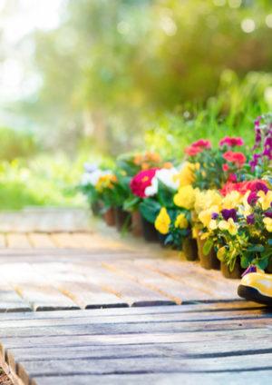 Tolle Ideen für Ihren Garten