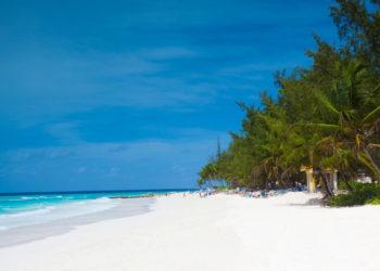 karibischer weißer Sandstrand auf der Insel Barbados