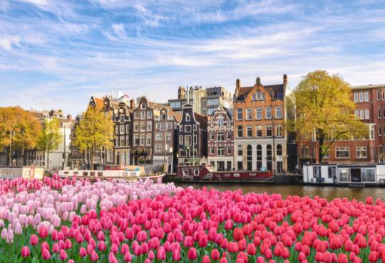 Amsterdam mit blühenden Tulpen im Frühling